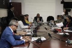 Dr. Castaneda explica a Comisión de la Asamblea el Ante Proyecto de Reformas a la LEG