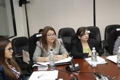 Ada Melvin Villalta, Coordinadora de Instrucción, explica aspectos técnicos del Ante Proyecto de Reforma.